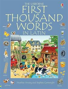 first 1000 words in latin 18 Outstanding Usborne Books for Middle School Tweens