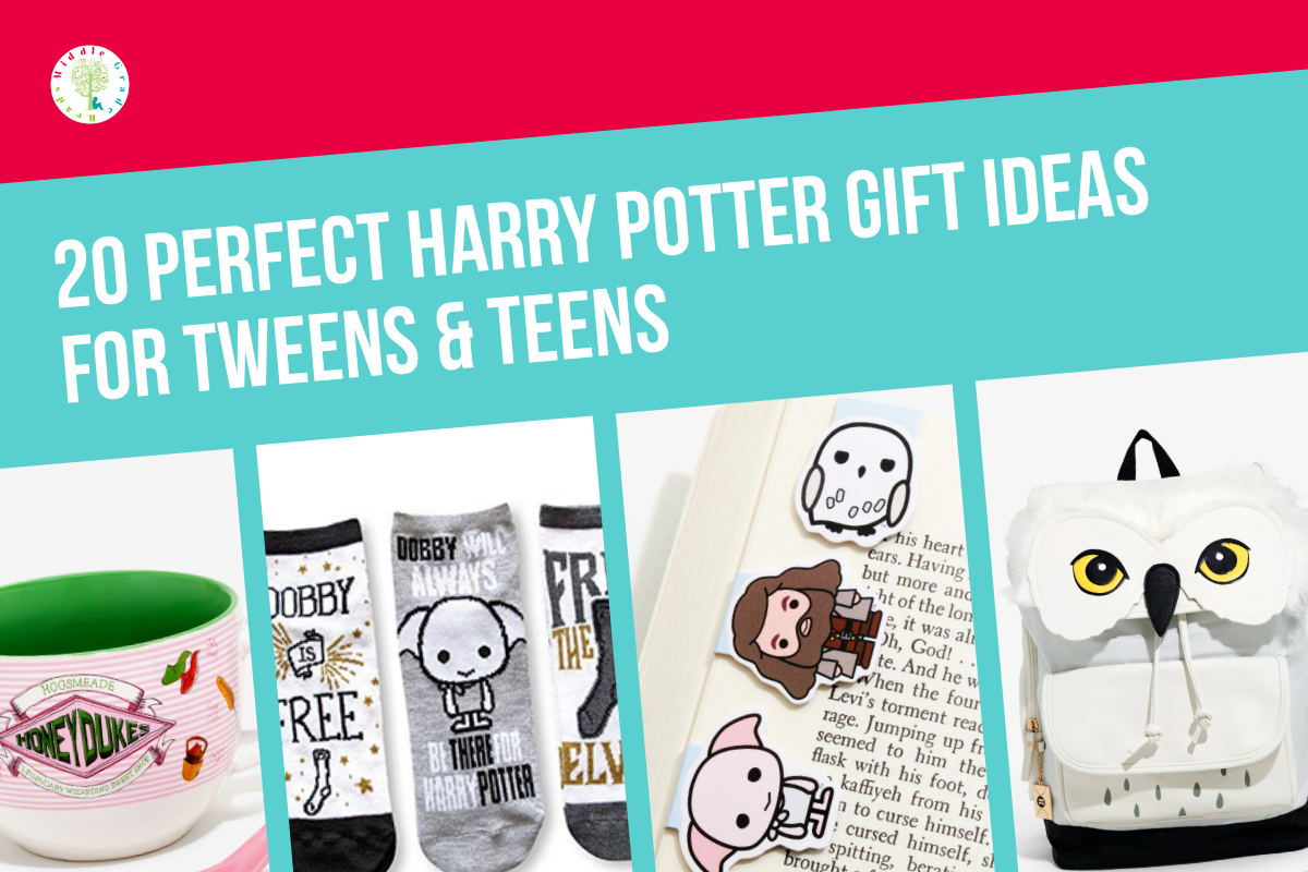20 Perfect Harry Potter Gift Ideas for Tweens & Teens - Middle Grade ...